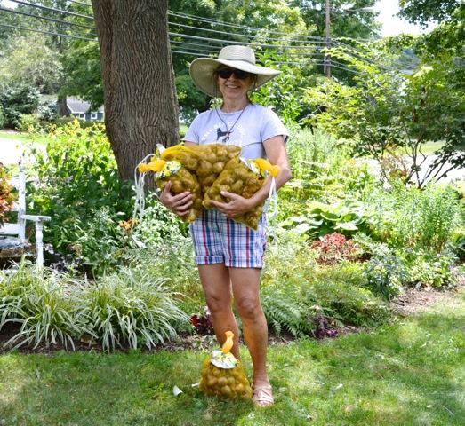 Johanne holding large bags of daffodil bulbs.