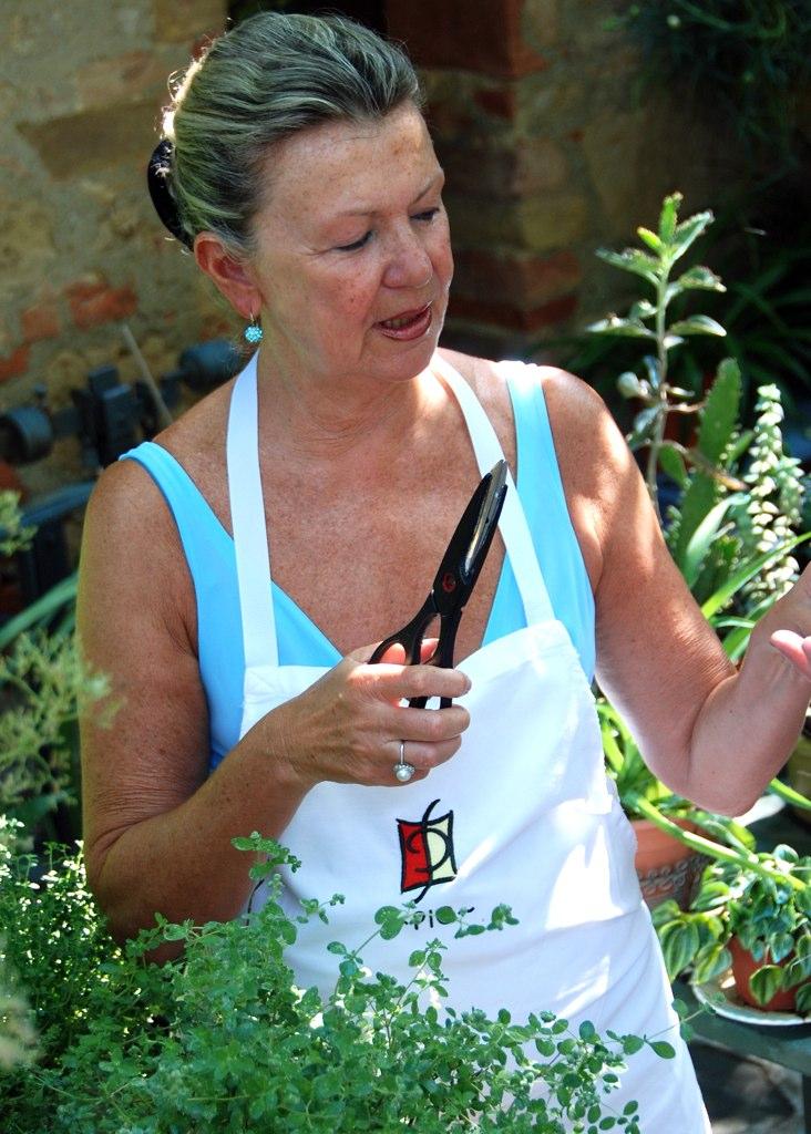 dania herbs