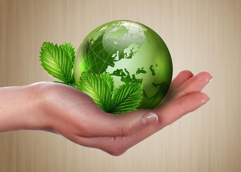 Hand holding green globe