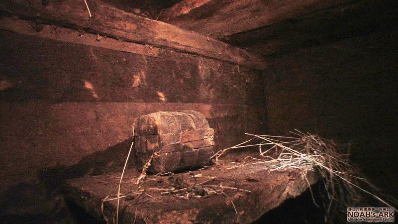 Ark Shelf