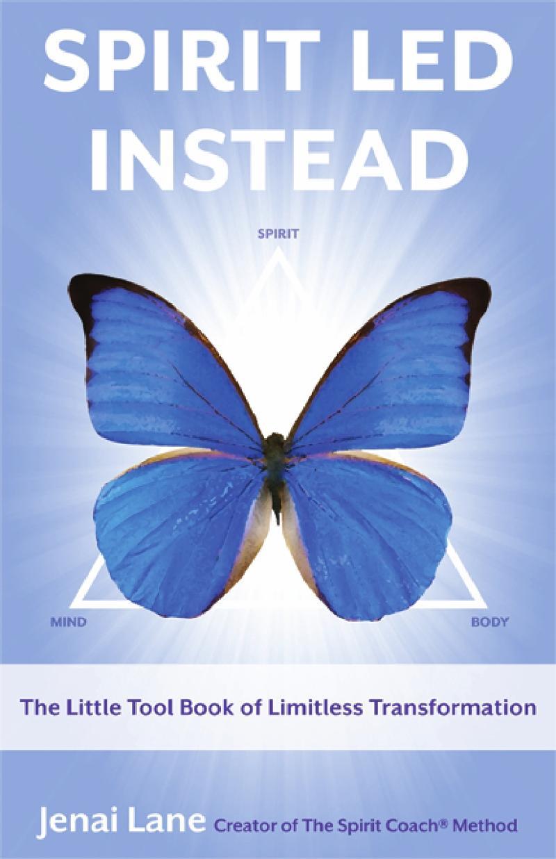 Spirit Led Instead Book Cover