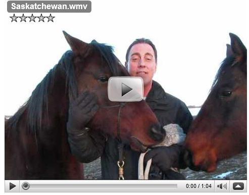 Feb 2010 Videoblog