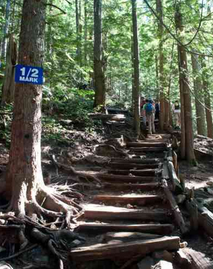 Grouse Grind pic