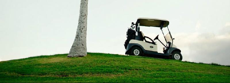 mazatlan golf