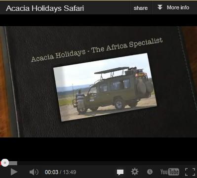 Acacia Video