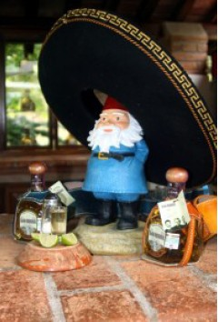 Travelocity Gnome with Tequila