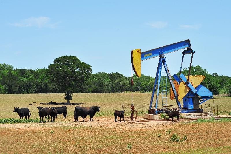 Obama Oil Release