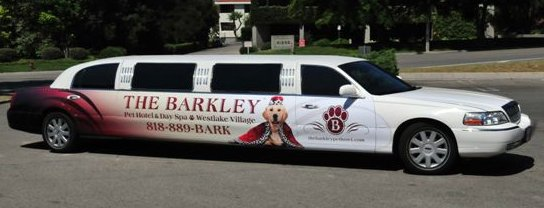 the barkley dog hotel limo service