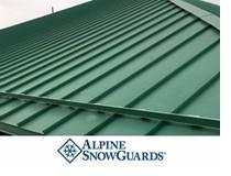 alpine-choosing-snowguards.jpg