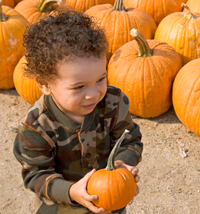 Boy Picking Pumpkin