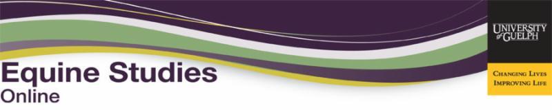 EquineStudiesOnline banner