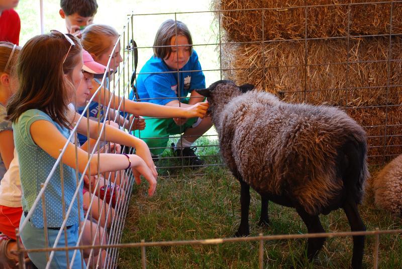 UNH School to Farm