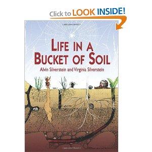 soil book Life in a bucket of soil