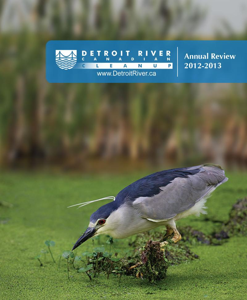 Annual Report Cover 12-13