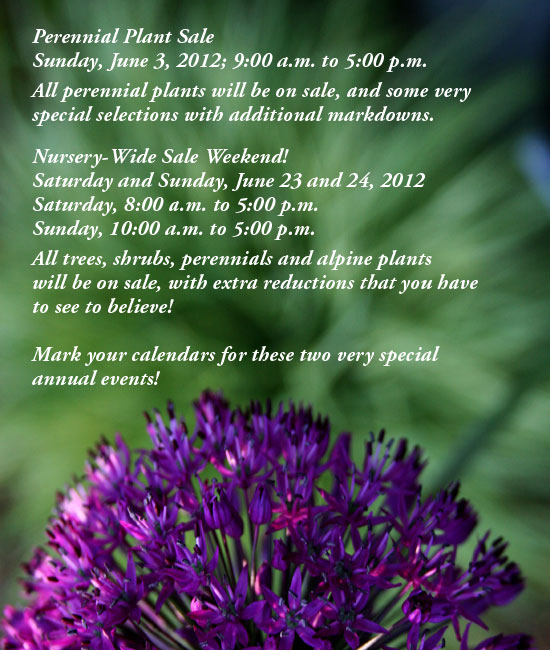 Sale - June 3, and June 23, 24