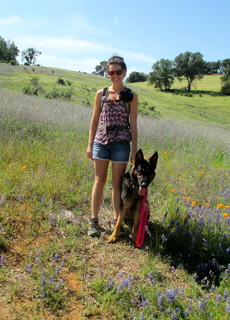 September News Amador County Animal Control Amp Adoption Center