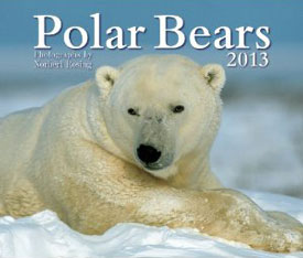 https://www.polarbearsinternational.org/gift-center/calendars