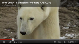 Nutrition for Mothers and Cubs