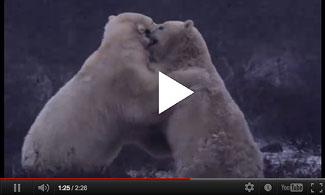 Clash of the Polar Titans
