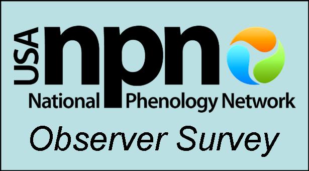 Observer Survey