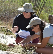 Observing grass phenology in Pima Canyon, Arizona.