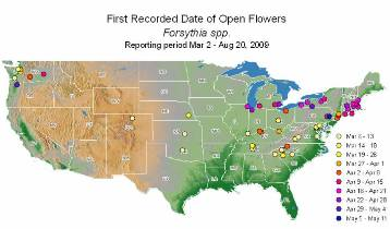 Map showing first observations of forsythia in bloom.