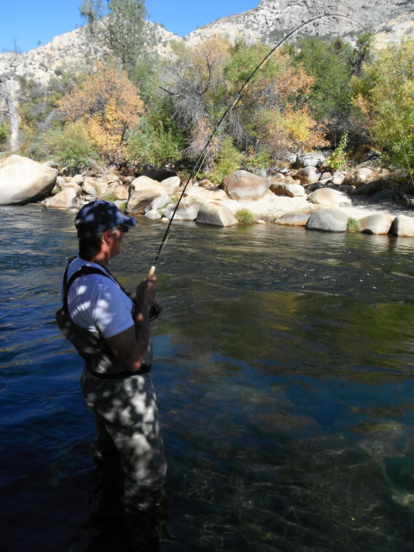 Kern river fly fishing inc newsletter for Kern river fishing