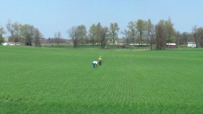 field shot