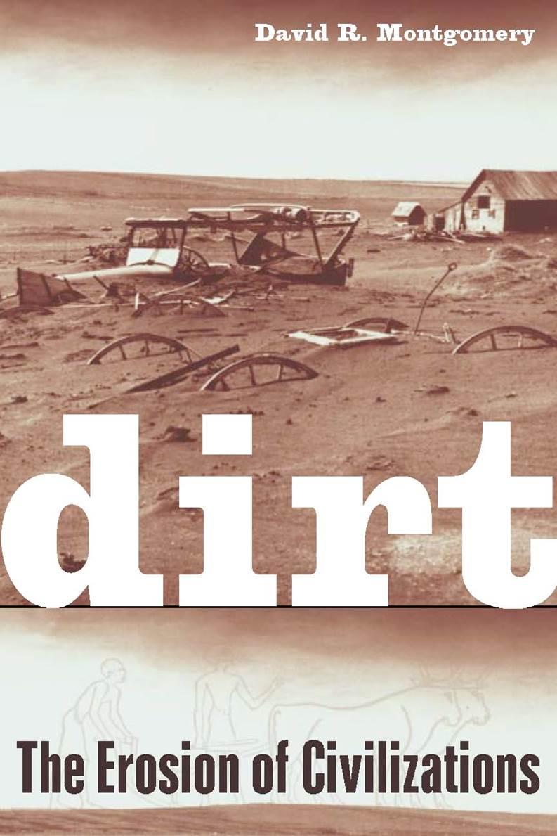 Dirt book cover
