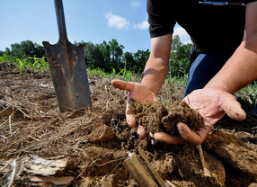 USDA - Soils
