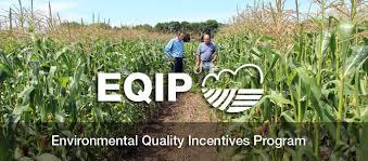EQIP logo