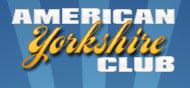 American Yorkshire Club