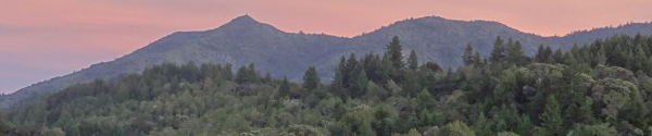 Mt. Tamalpais Watershed