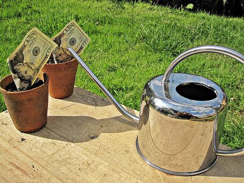 crowdfunding investor