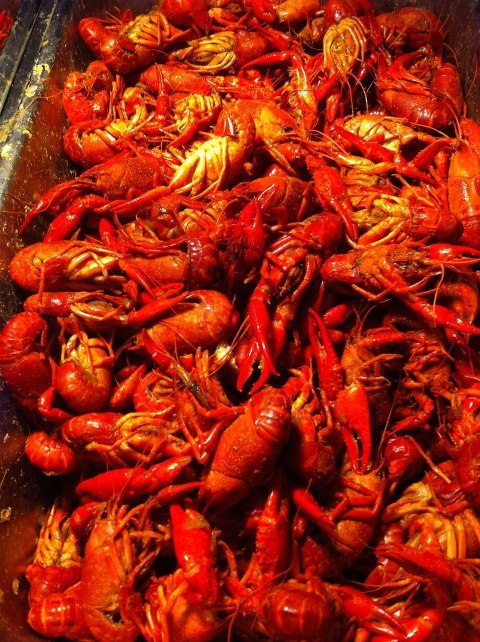 It S Crawfish Time Again At Landry S Seafood Amp Steakhouse