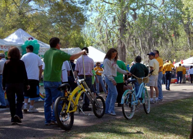 Festival of Live Oaks New Iberia