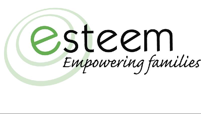 esteem services logo
