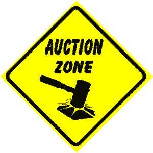 Auction Zone