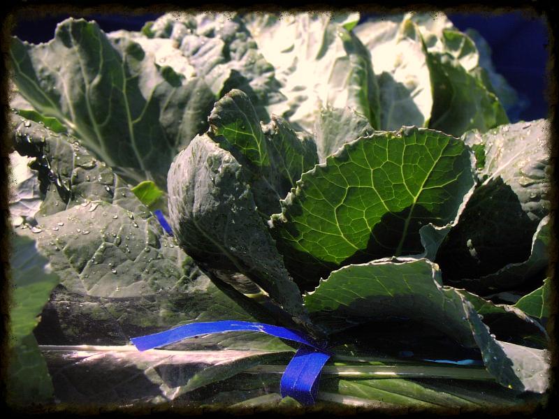 Collard greens - Shone