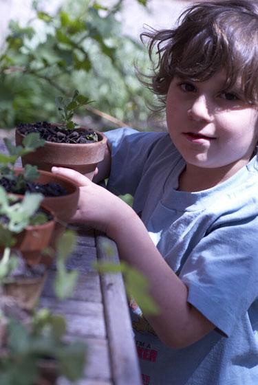 boy with seedlings