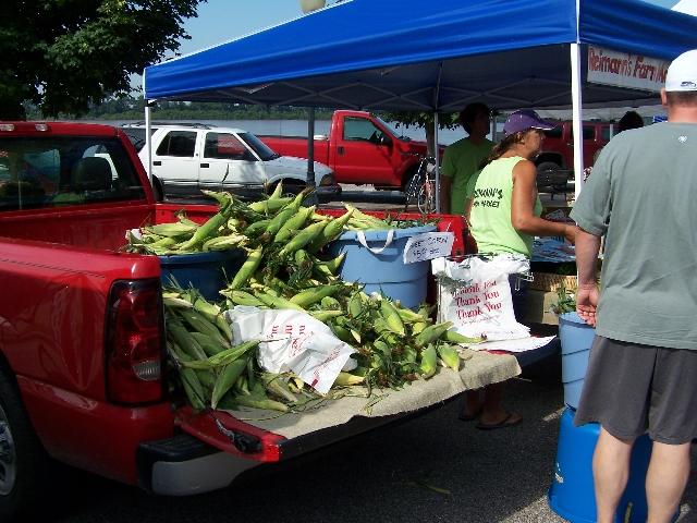 corn and more corn