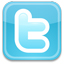 Networking: twitter logo