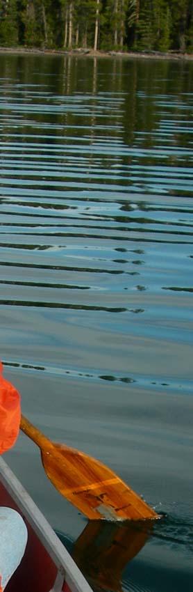 canoe paddle reflections