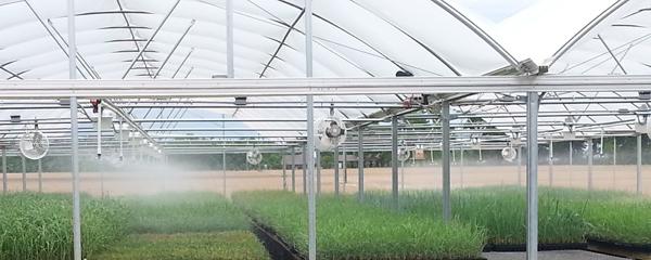 New Atlas Greenhouse