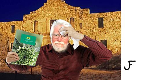 JF The Alamo