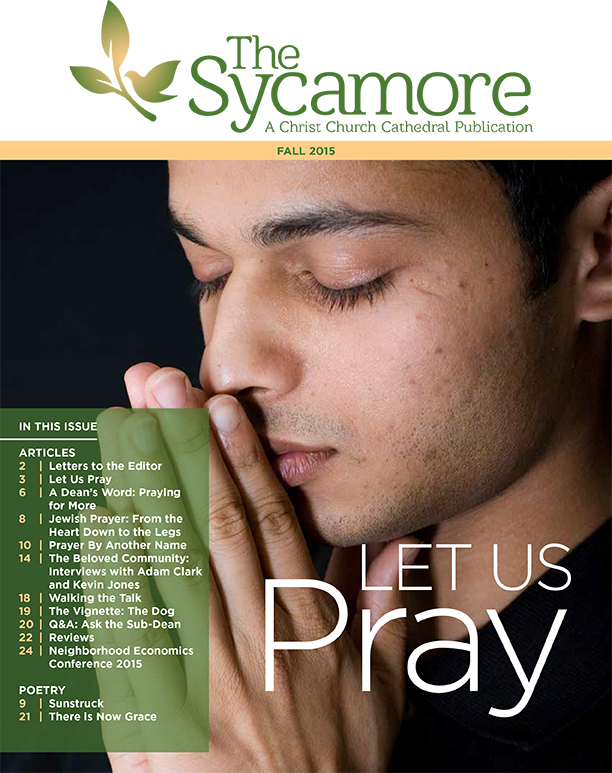 The Sycamore