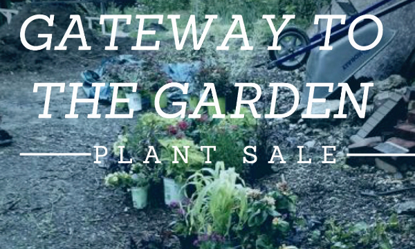 GP plant sale