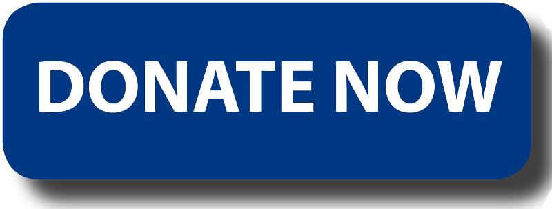 Donate Now Button - blue