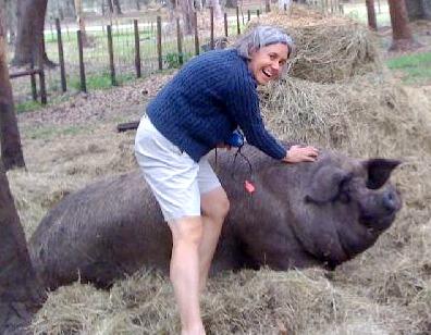 Margaret the Pig