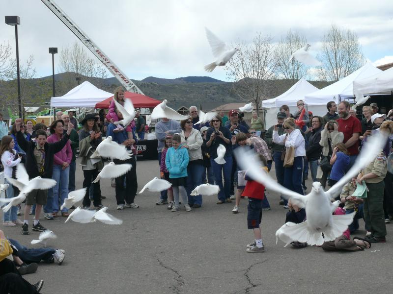 2010 Dove Race